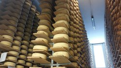 Visite fromagerie2 (19) (960x540)