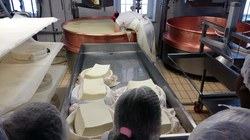 Visite fromagerie2 (29) (960x540)